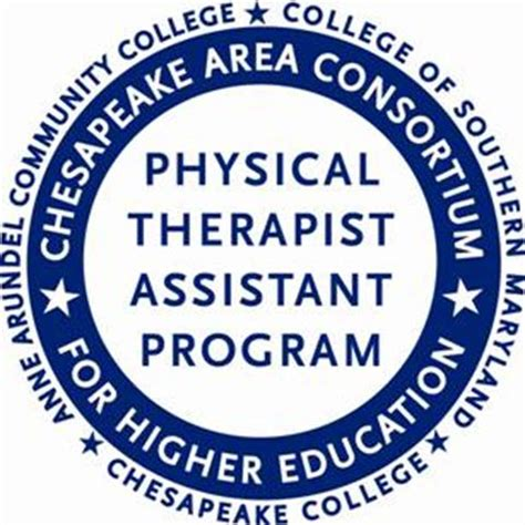 5 Reasons Why Physical Therapy Is Important